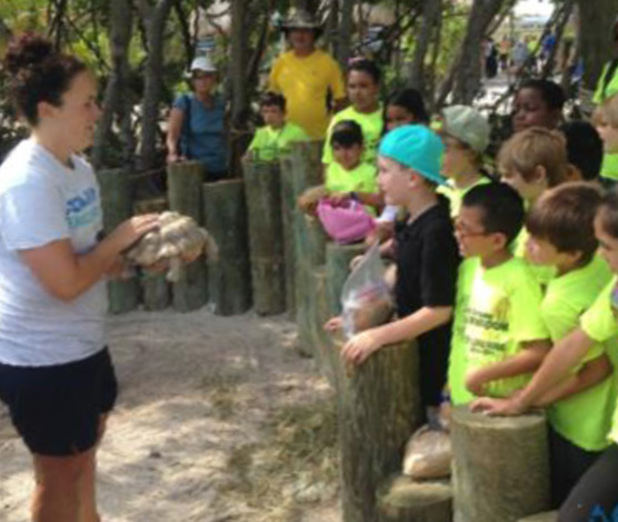 Schedule your Field Trip at Aquarium Encounters today!