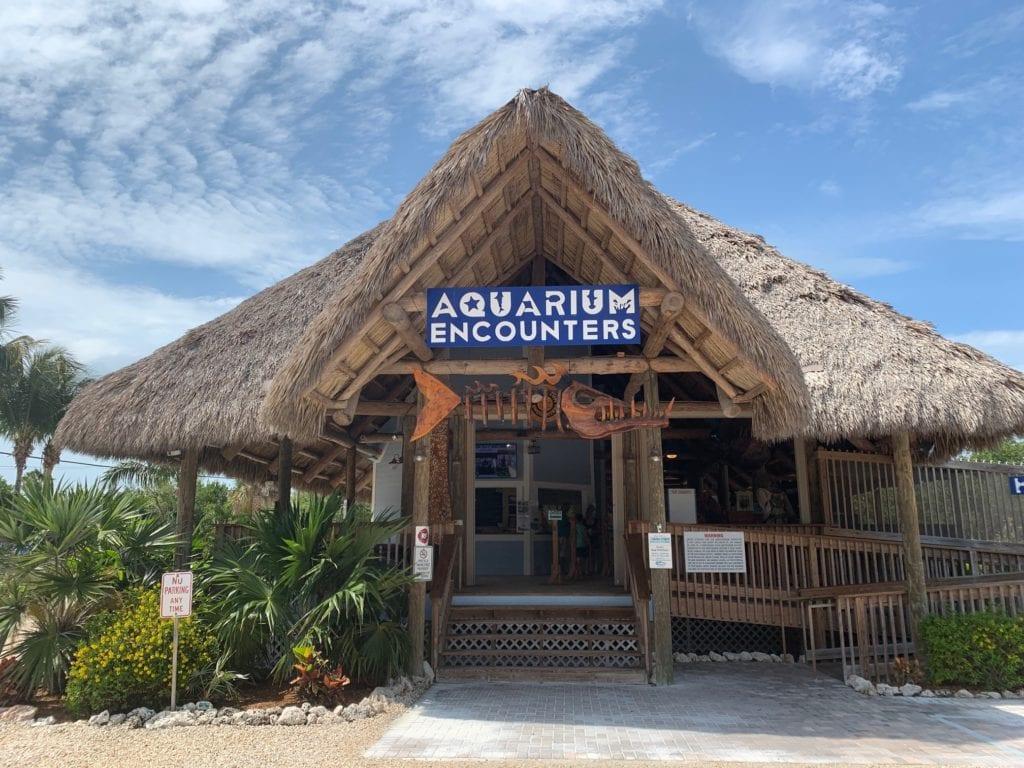 entry to aquarium