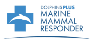 DPMMR_Primary_Logo-001-removebg-preview (2)